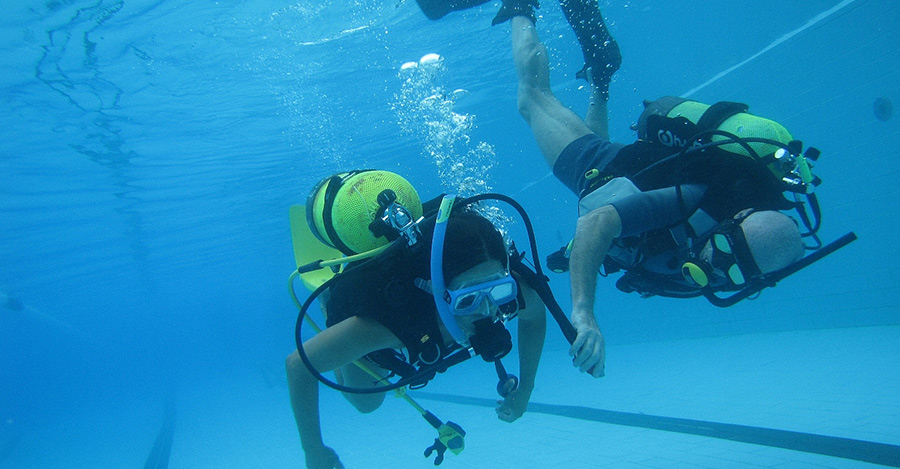 diving in zakynthos padi seal team