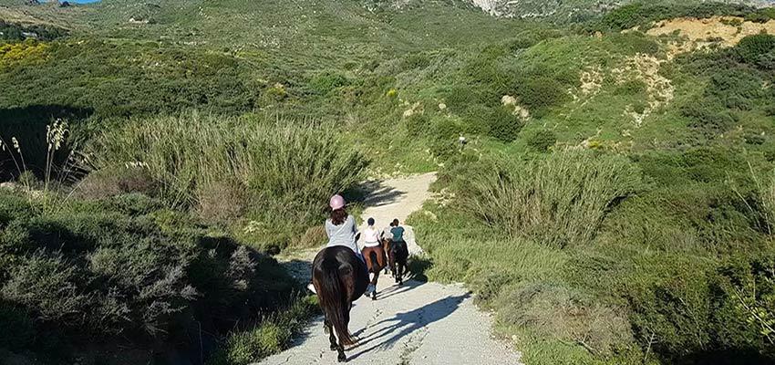horse riding in mountain zante