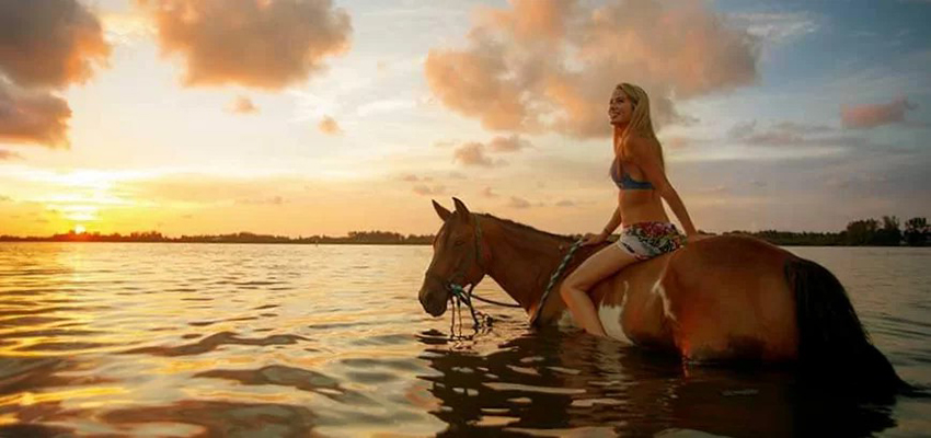 horse riding in zante.