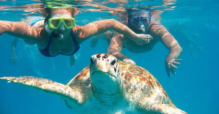 szkola nurkowania na zakynthos skin diver