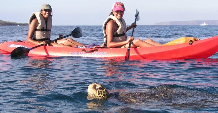 kayak e pedalò per vedere le tartarughe Caretta Caretta Di Zante
