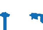 Logo rentbikecarzante