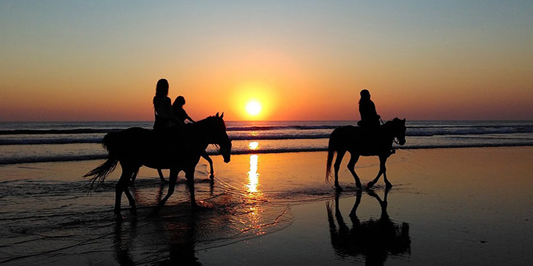 Équitation à Zakynthos