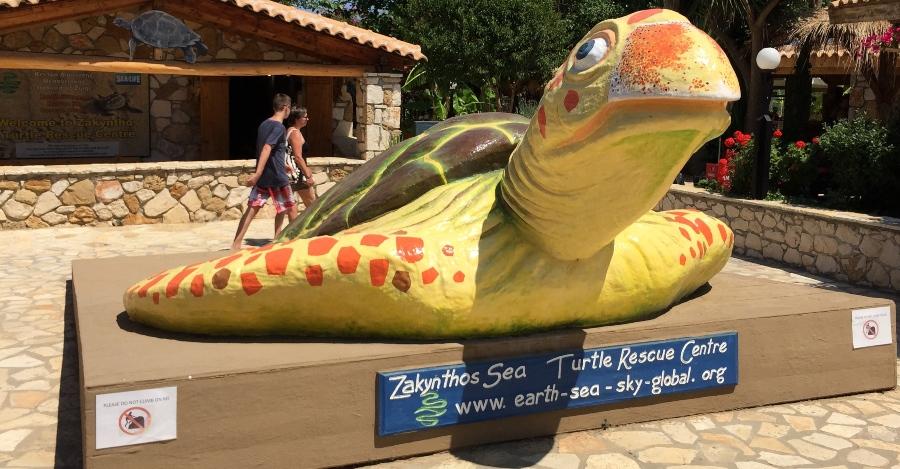 visita al turtles rescue centre zakynthos famiglia con bambini